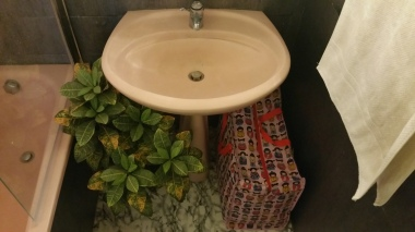 Sink & plant bathroom gamanacasa