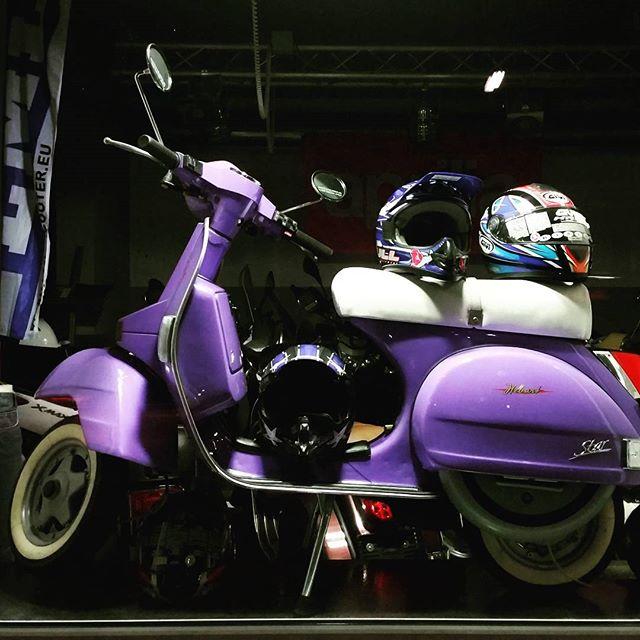 gamanacasa violet