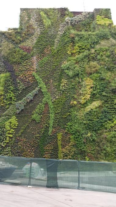 gamanacasa green wall madrid espanha