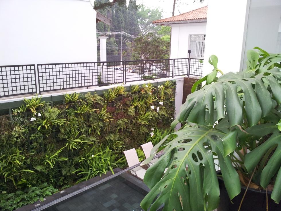 gamanacasa green wall orchids